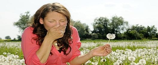 L'allergia: una patologia immunologica